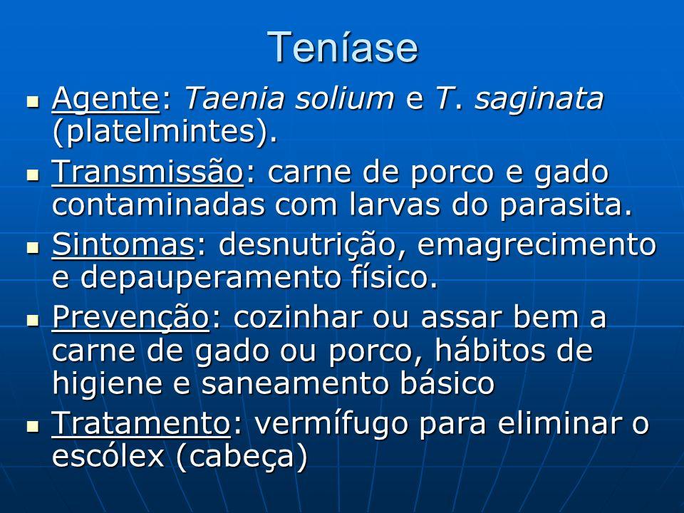 Teníase Agente: Taenia solium e T. saginata (platelmintes).
