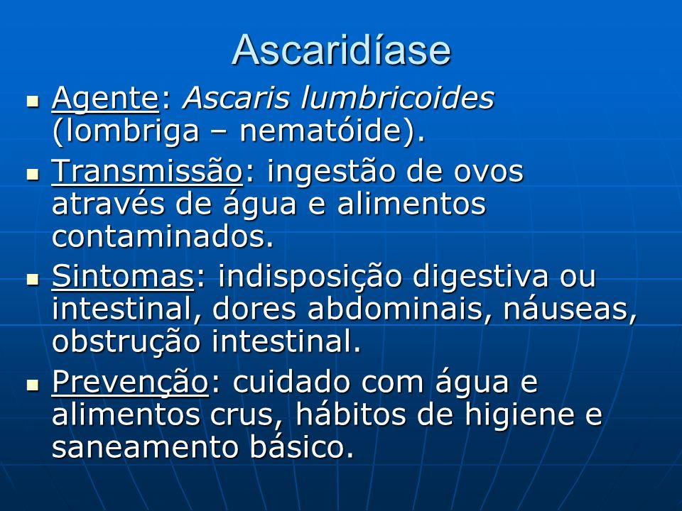 Ascaridíase Agente: Ascaris lumbricoides (lombriga – nematóide).