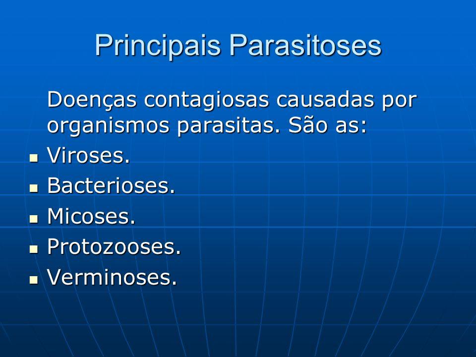 Principais Parasitoses
