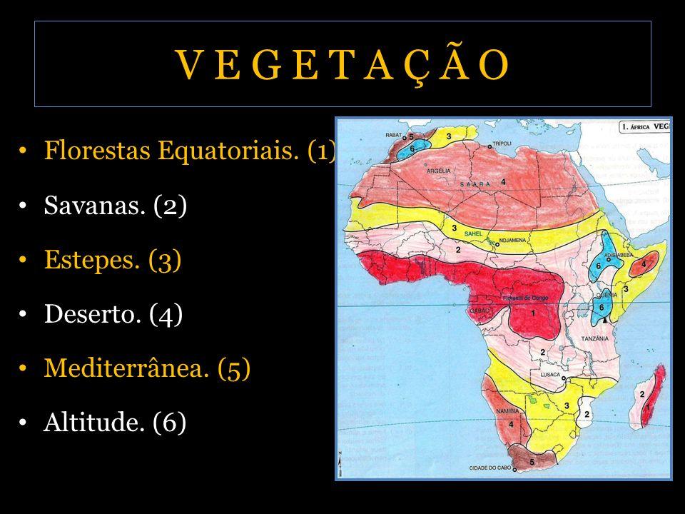 V E G E T A Ç Ã O Florestas Equatoriais. (1) Savanas. (2) Estepes. (3)