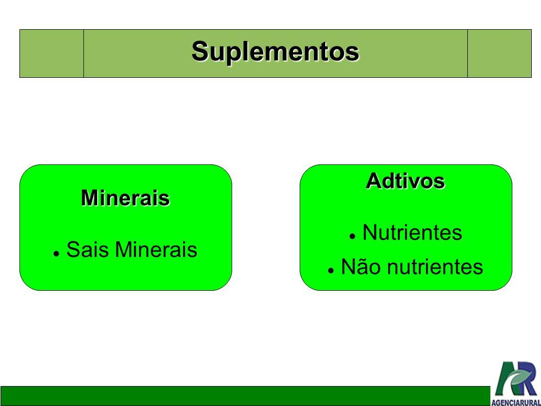 Suplementos Minerais Sais Minerais Adtivos Nutrientes Não nutrientes