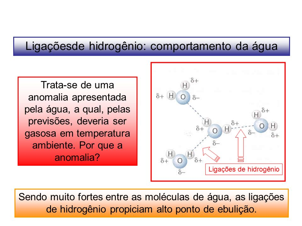 Ligaçõesde hidrogênio: comportamento da água