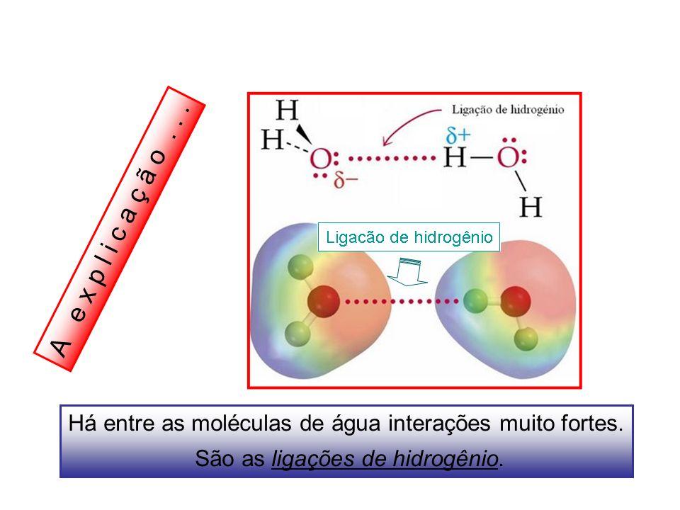 A e x p l i c a ç ã o . Há entre as moléculas de água interações muito fortes.