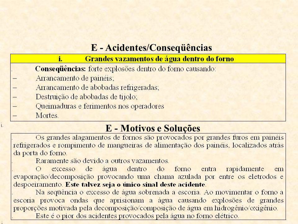 E - Acidentes/Conseqüências