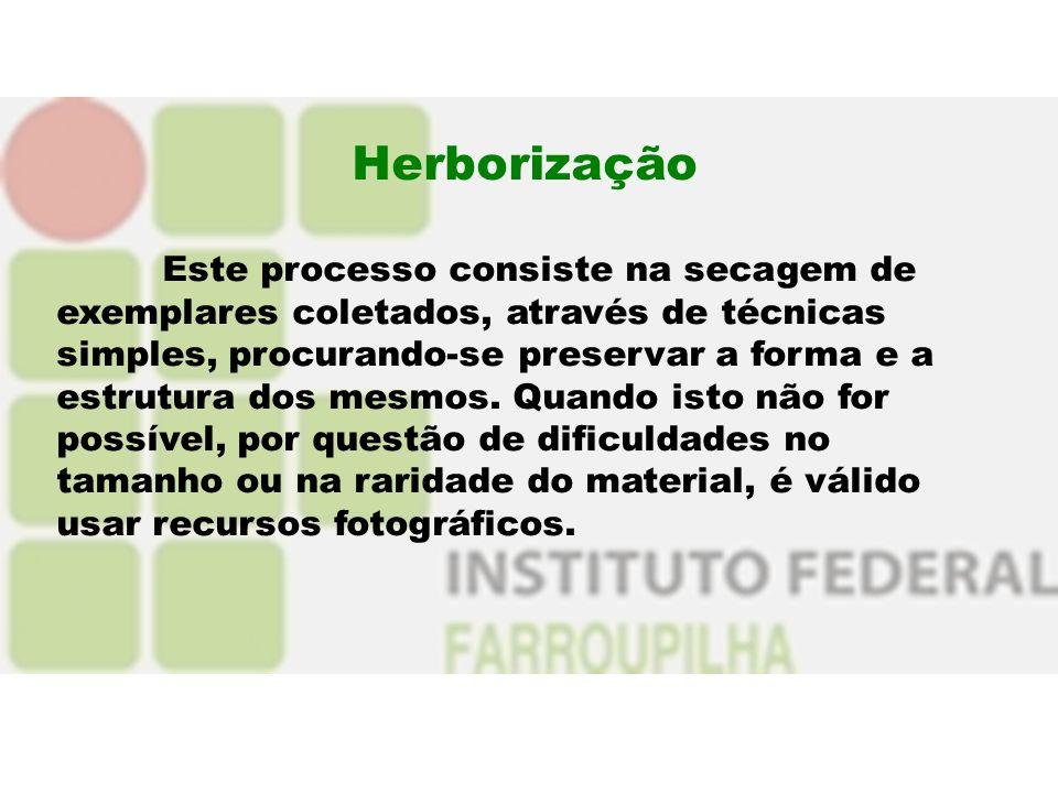 Herborização