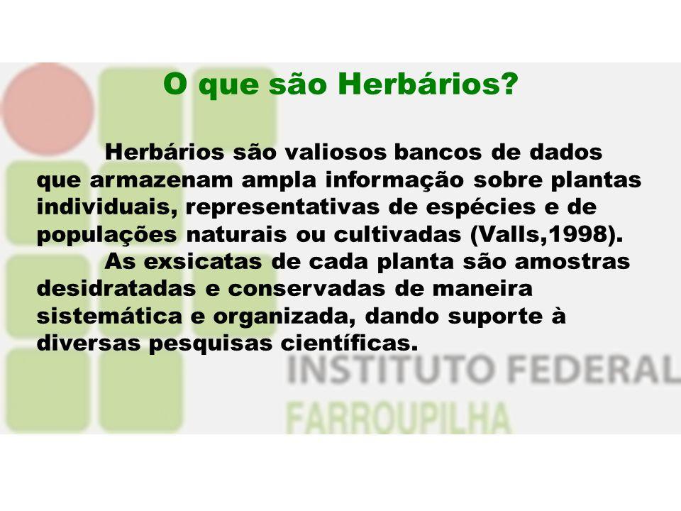 O que são Herbários