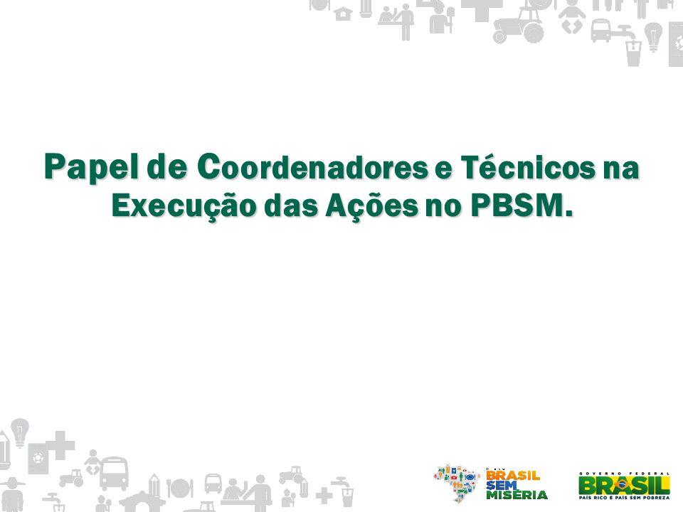 Papel de Coordenadores e Técnicos na Execução das Ações no PBSM.