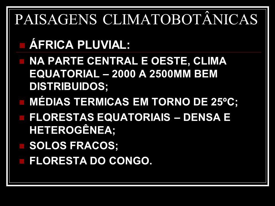 PAISAGENS CLIMATOBOTÂNICAS