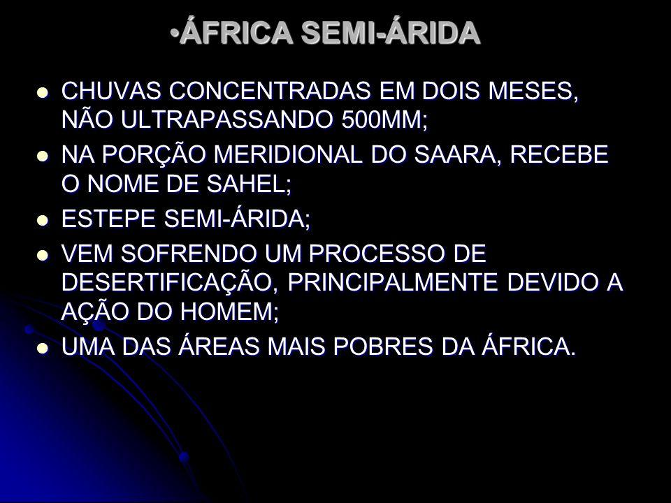 ÁFRICA SEMI-ÁRIDA CHUVAS CONCENTRADAS EM DOIS MESES, NÃO ULTRAPASSANDO 500MM; NA PORÇÃO MERIDIONAL DO SAARA, RECEBE O NOME DE SAHEL;
