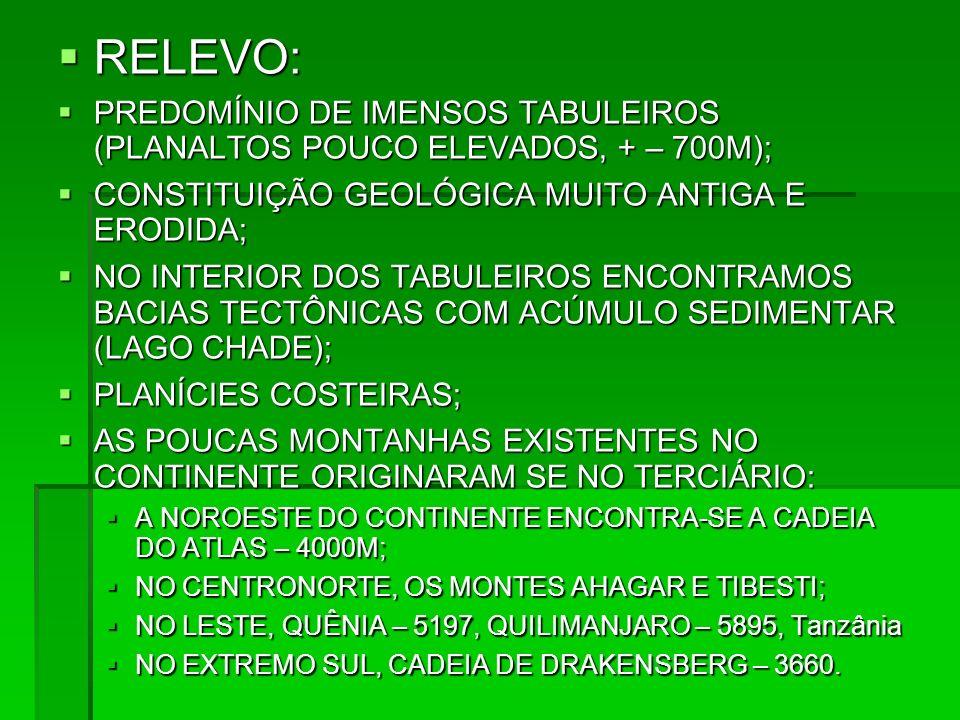 RELEVO: PREDOMÍNIO DE IMENSOS TABULEIROS (PLANALTOS POUCO ELEVADOS, + – 700M); CONSTITUIÇÃO GEOLÓGICA MUITO ANTIGA E ERODIDA;