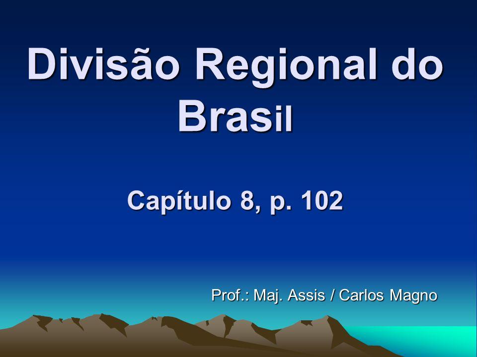 Divisão Regional do Brasil Capítulo 8, p. 102