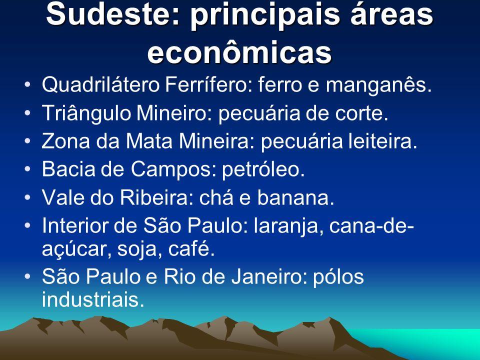 Sudeste: principais áreas econômicas