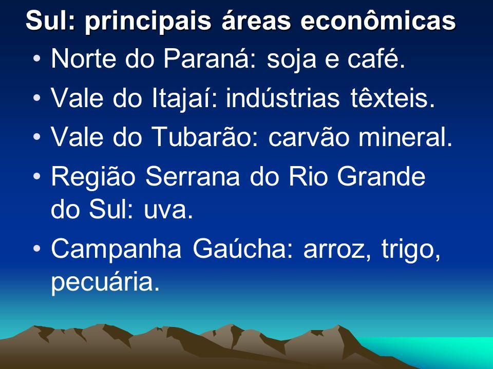 Sul: principais áreas econômicas