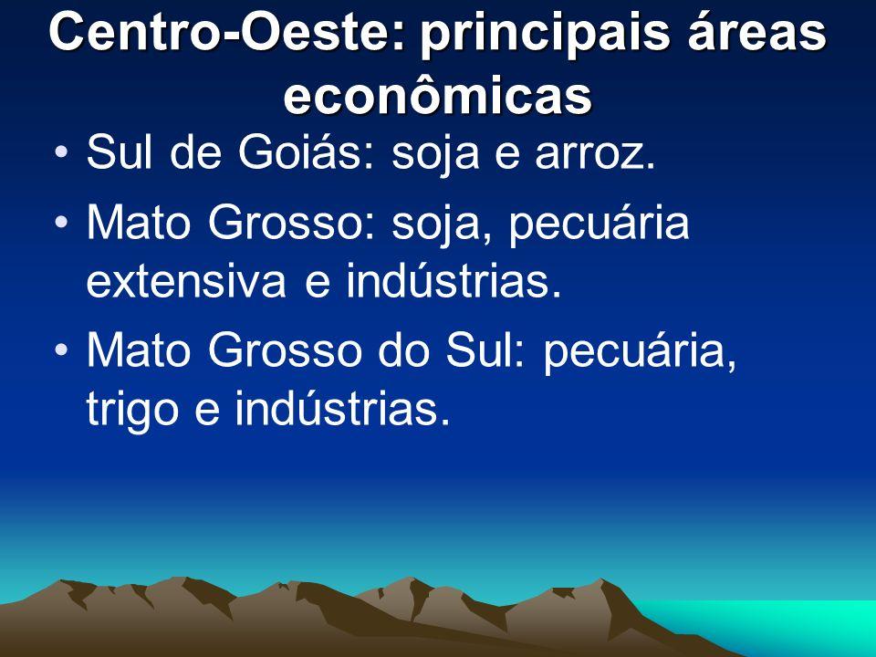 Centro-Oeste: principais áreas econômicas