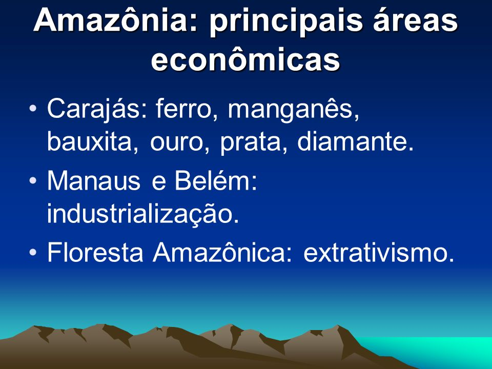 Amazônia: principais áreas econômicas