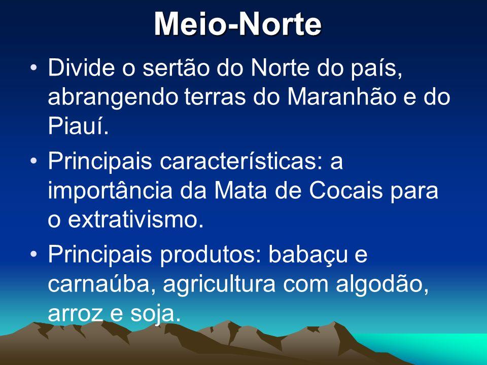 Meio-Norte Divide o sertão do Norte do país, abrangendo terras do Maranhão e do Piauí.