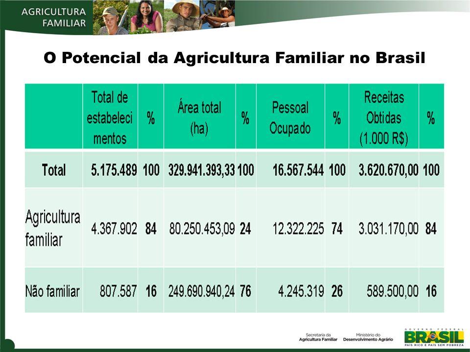 O Potencial da Agricultura Familiar no Brasil
