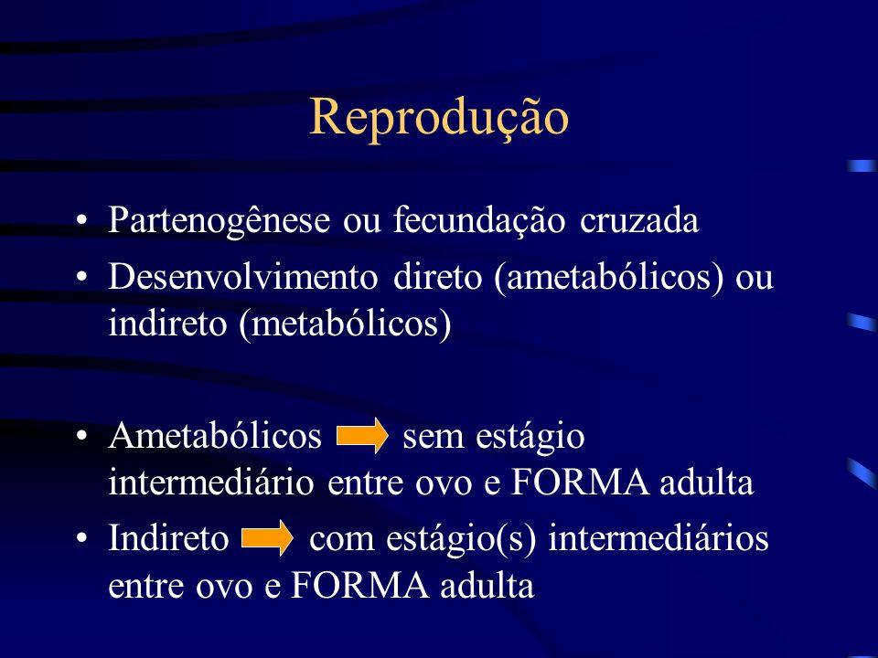 Reprodução Partenogênese ou fecundação cruzada