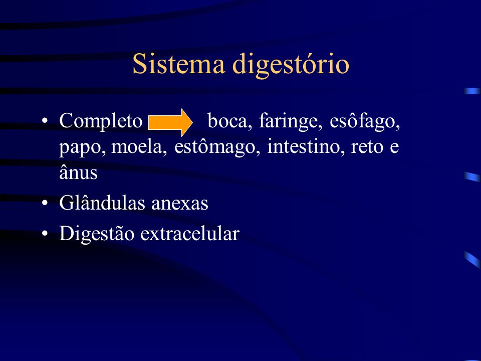 Sistema digestório Completo boca, faringe, esôfago, papo, moela, estômago, intestino, reto e ânus.