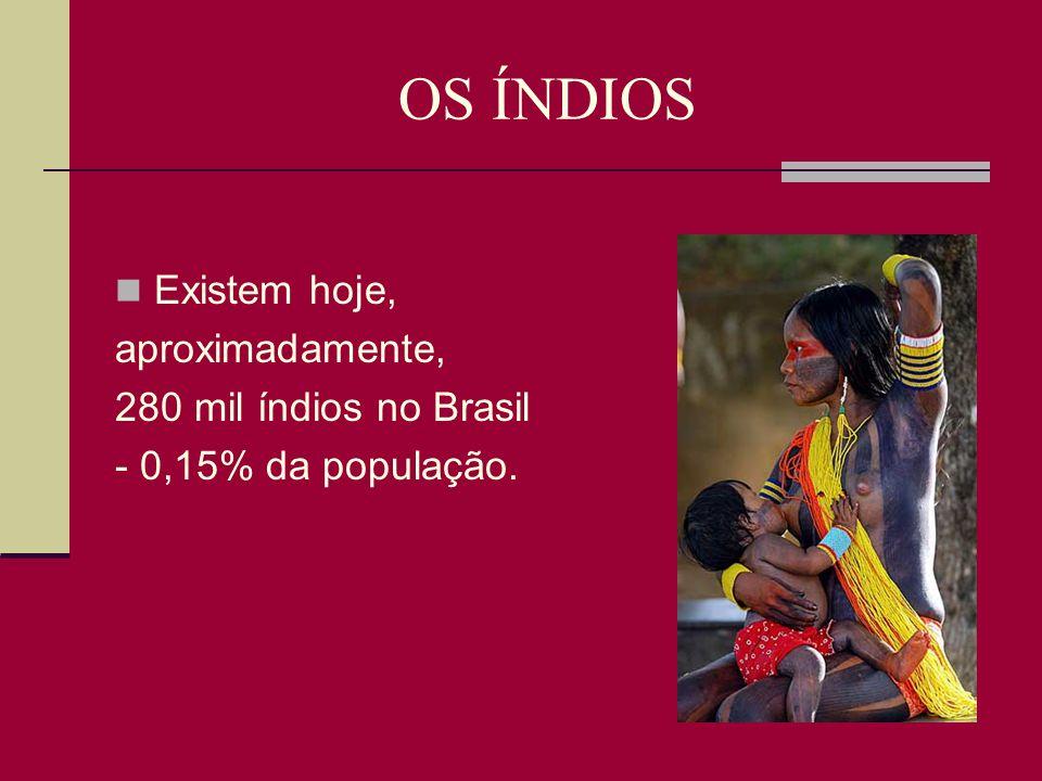 OS ÍNDIOS Existem hoje, aproximadamente, 280 mil índios no Brasil
