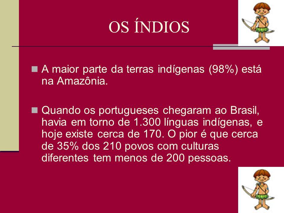 OS ÍNDIOS A maior parte da terras indígenas (98%) está na Amazônia.