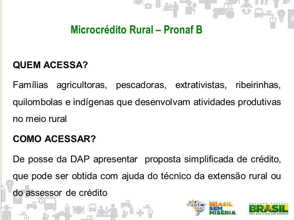 Microcrédito Rural – Pronaf B