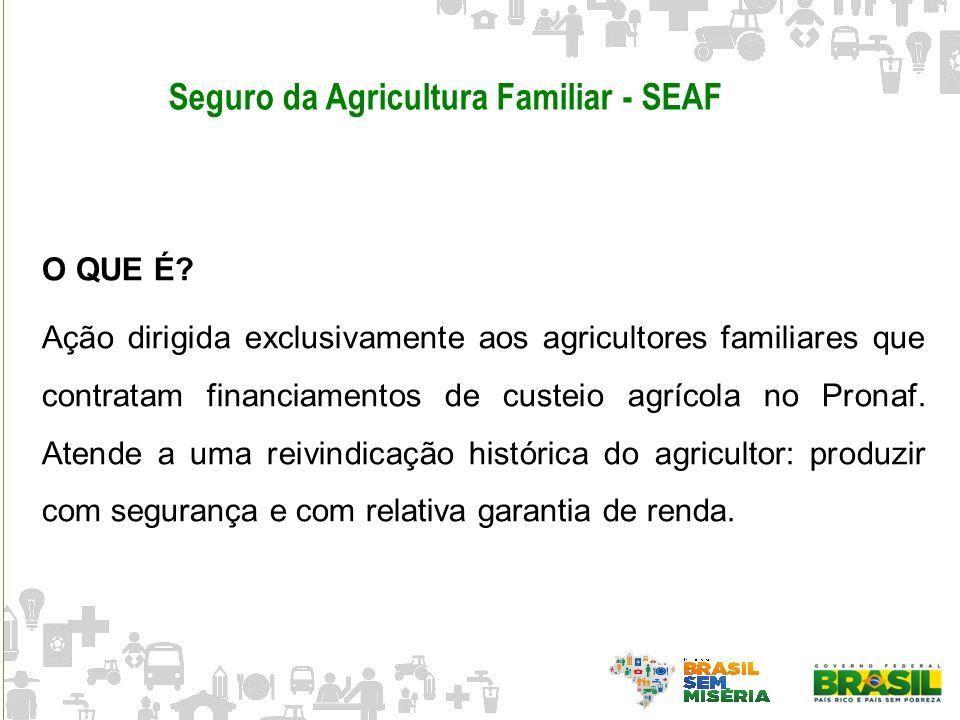 Seguro da Agricultura Familiar - SEAF