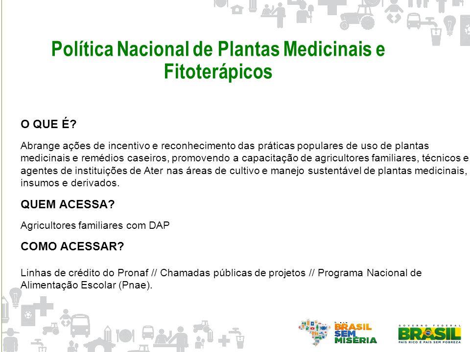 Política Nacional de Plantas Medicinais e Fitoterápicos
