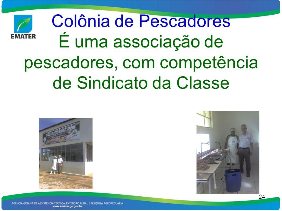 Colônia de Pescadores É uma associação de pescadores, com competência de Sindicato da Classe