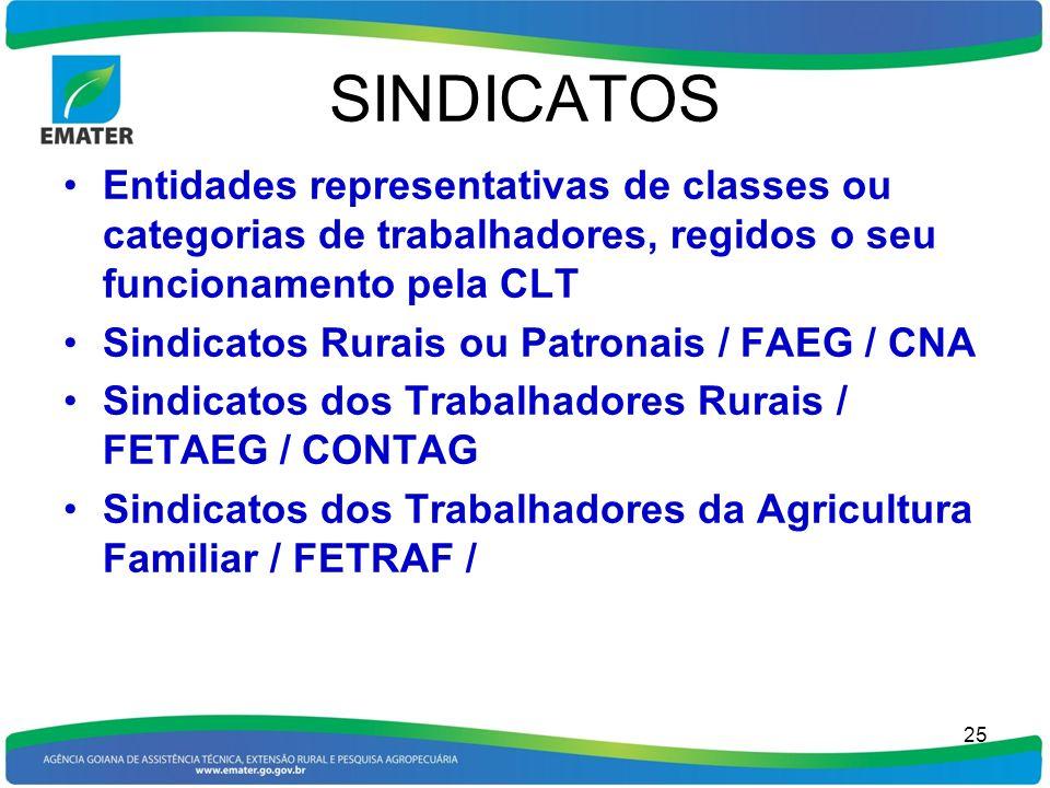 SINDICATOS Entidades representativas de classes ou categorias de trabalhadores, regidos o seu funcionamento pela CLT.