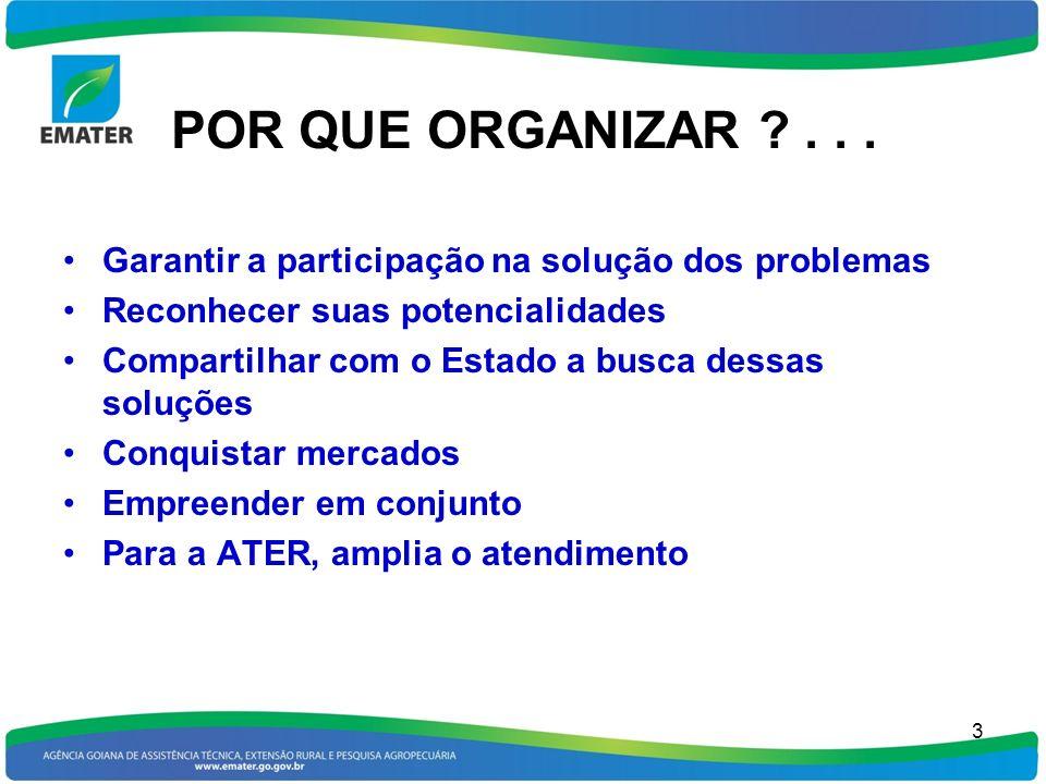 POR QUE ORGANIZAR . . . Garantir a participação na solução dos problemas. Reconhecer suas potencialidades.