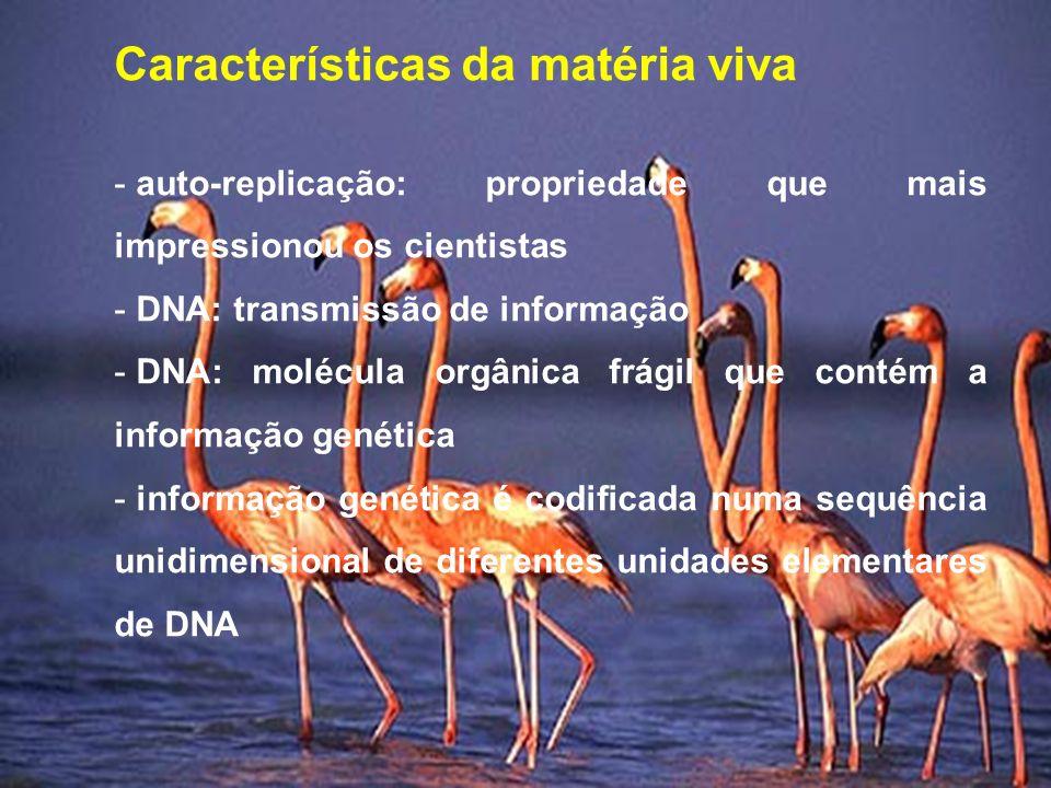 Características da matéria viva