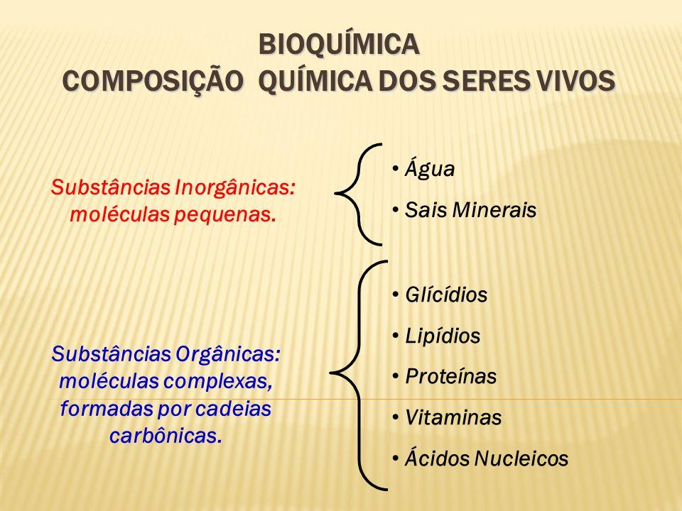 BIOQUÍMICA COMPOSIÇÃO QUÍMICA DOS SERES VIVOS