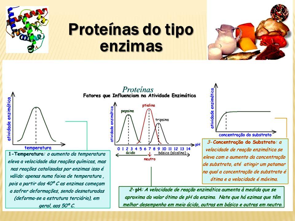 Proteínas do tipo enzimas