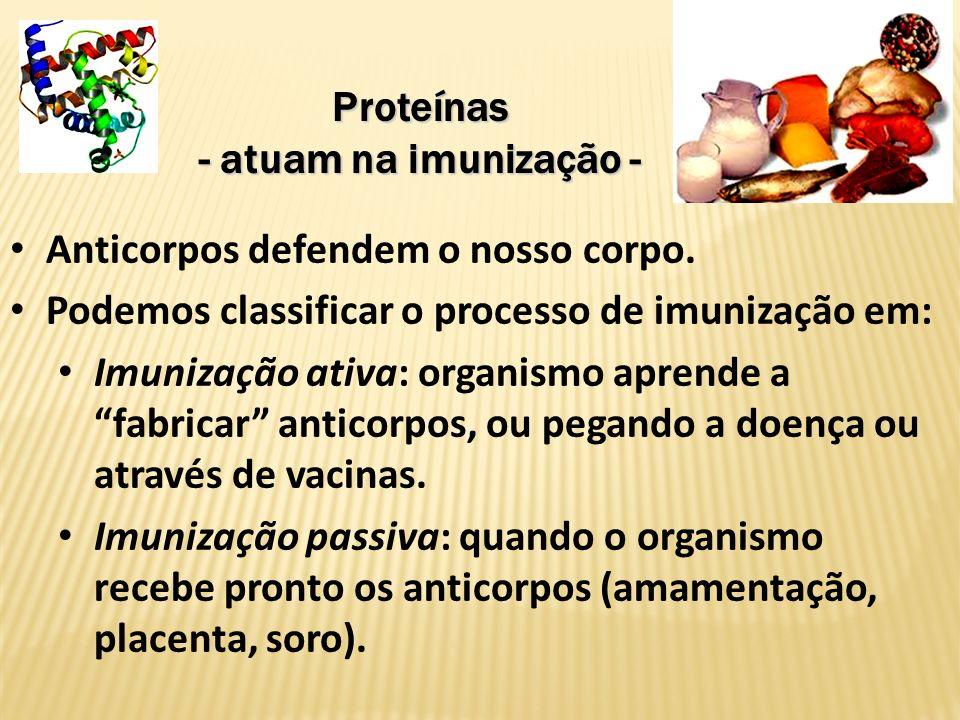 Proteínas - atuam na imunização - Anticorpos defendem o nosso corpo. Podemos classificar o processo de imunização em: