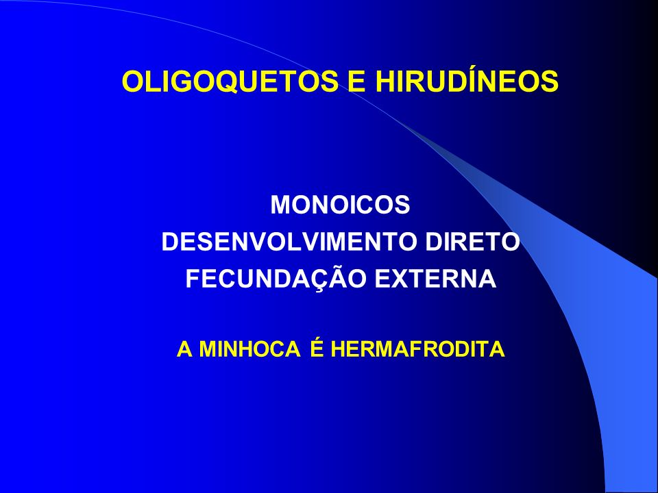 OLIGOQUETOS E HIRUDÍNEOS