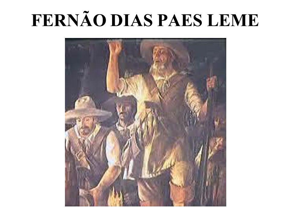 FERNÃO DIAS PAES LEME
