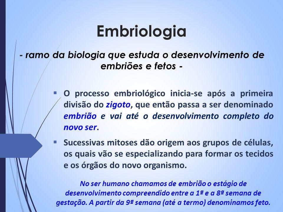 - ramo da biologia que estuda o desenvolvimento de embriões e fetos -