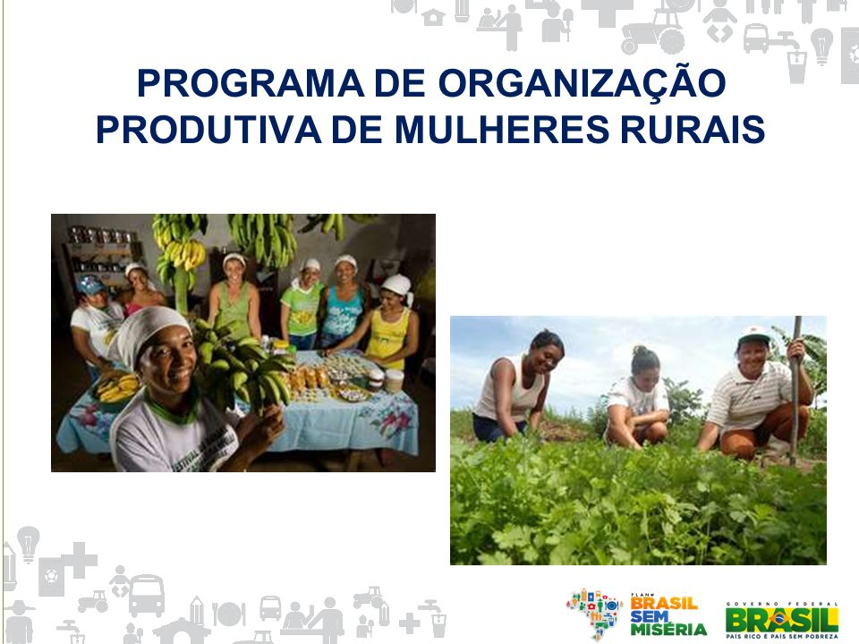 PROGRAMA DE ORGANIZAÇÃO PRODUTIVA DE MULHERES RURAIS