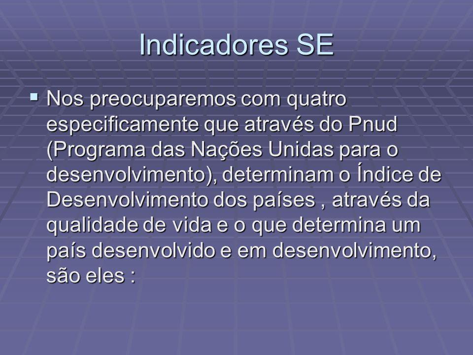 Indicadores SE