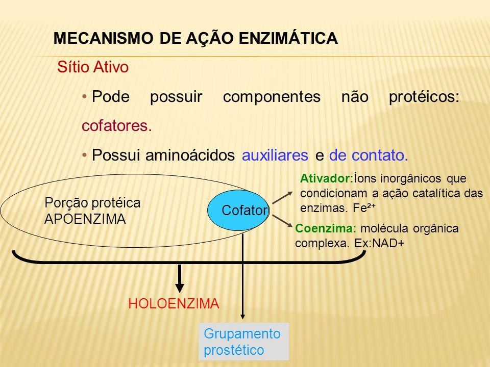 MECANISMO DE AÇÃO ENZIMÁTICA Sítio Ativo