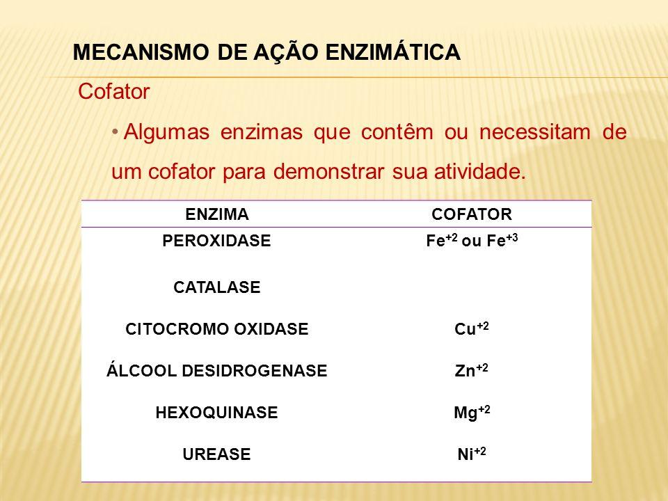 MECANISMO DE AÇÃO ENZIMÁTICA Cofator