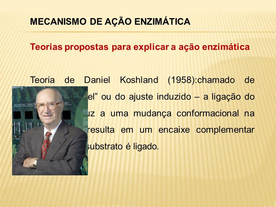 MECANISMO DE AÇÃO ENZIMÁTICA