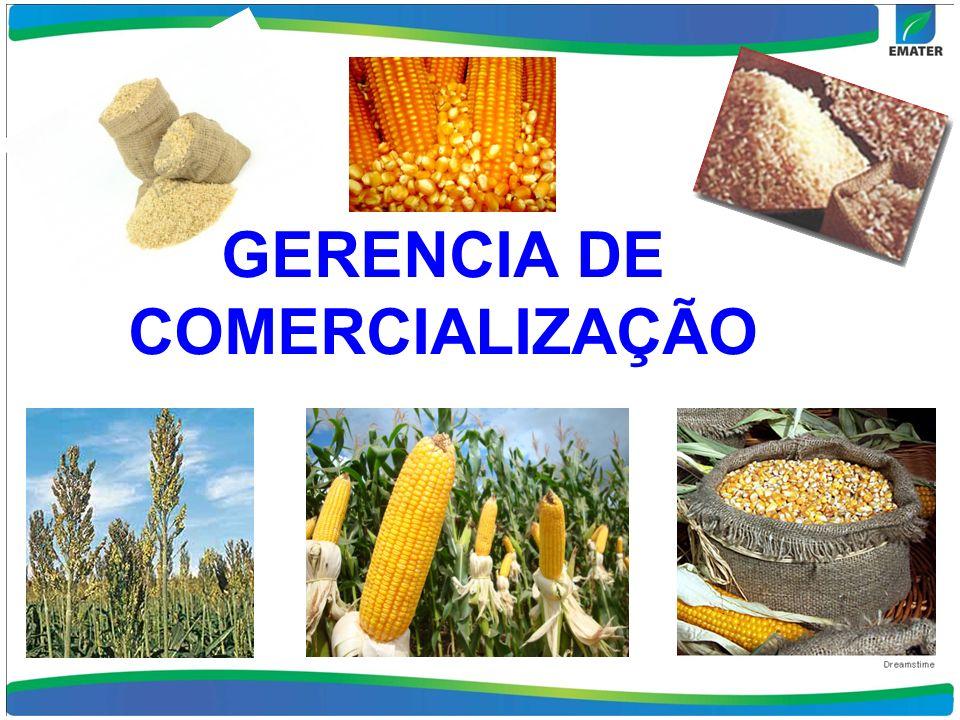 GERENCIA DE COMERCIALIZAÇÃO
