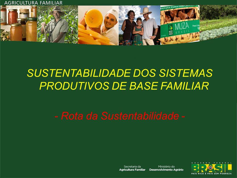 SUSTENTABILIDADE DOS SISTEMAS PRODUTIVOS DE BASE FAMILIAR