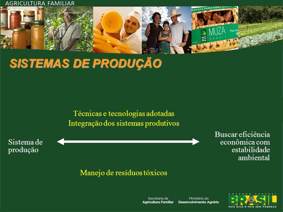 SISTEMAS DE PRODUÇÃOSistema de produção. Técnicas e tecnologias adotadas. Integração dos sistemas produtivos.