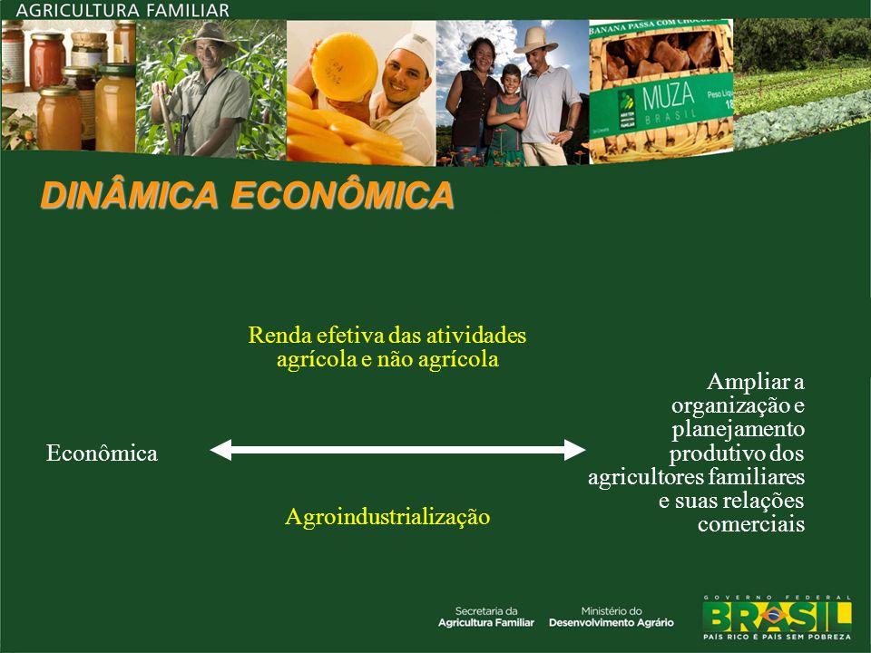 DINÂMICA ECONÔMICA Econômica. Renda efetiva das atividades agrícola e não agrícola.