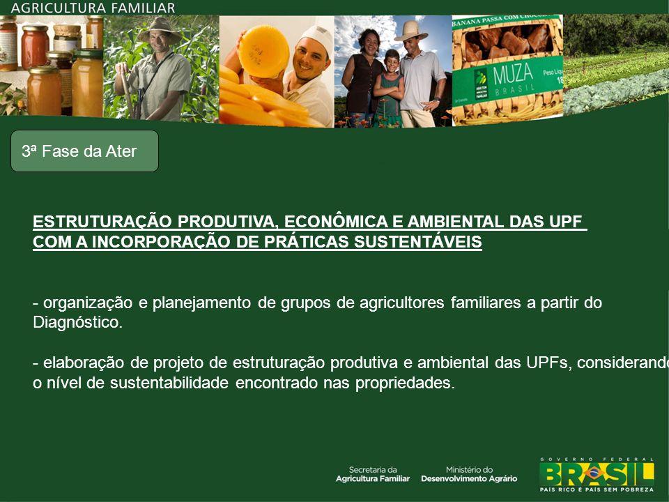ESTRUTURAÇÃO PRODUTIVA, ECONÔMICA E AMBIENTAL DAS UPF