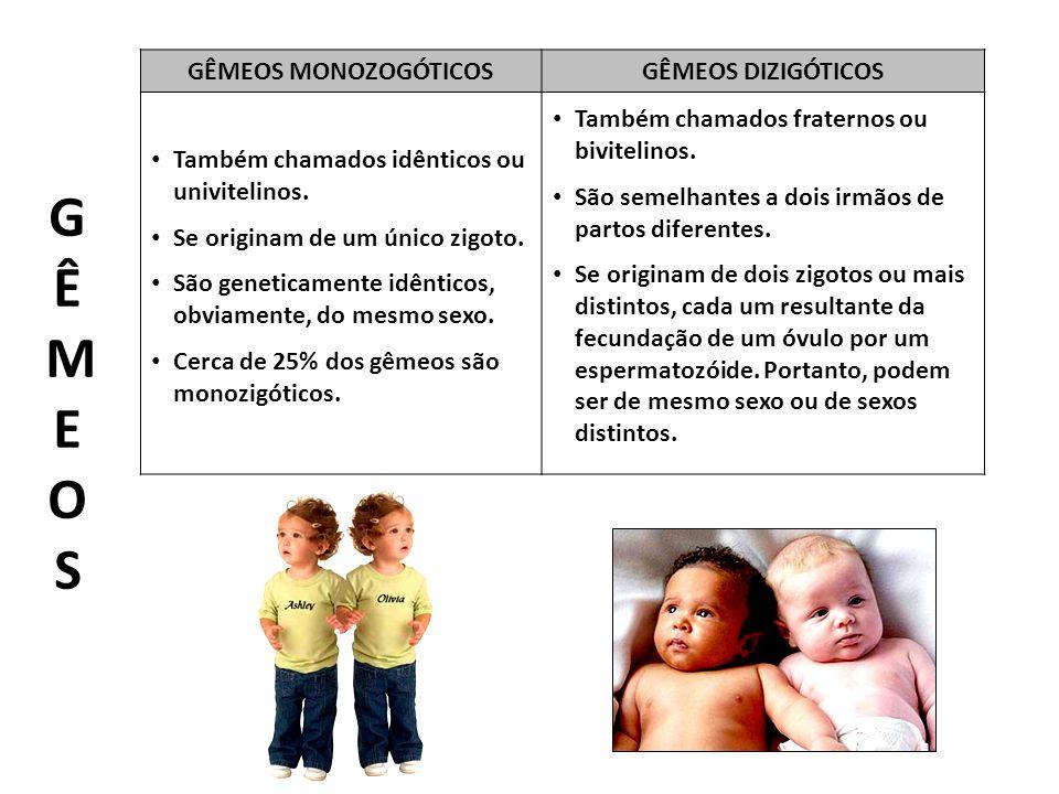G Ê M E O S GÊMEOS MONOZOGÓTICOS GÊMEOS DIZIGÓTICOS