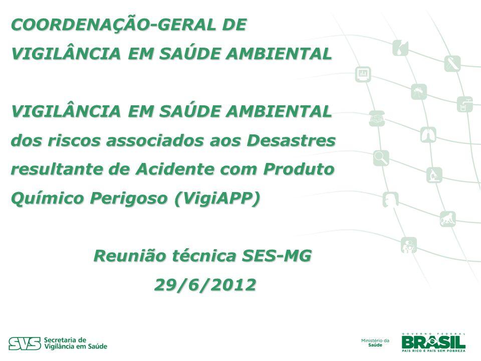 Reunião técnica SES-MG